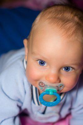 mecanisme de succion bebe